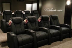 Slick Fusion Collection Tribute-1015 recliners